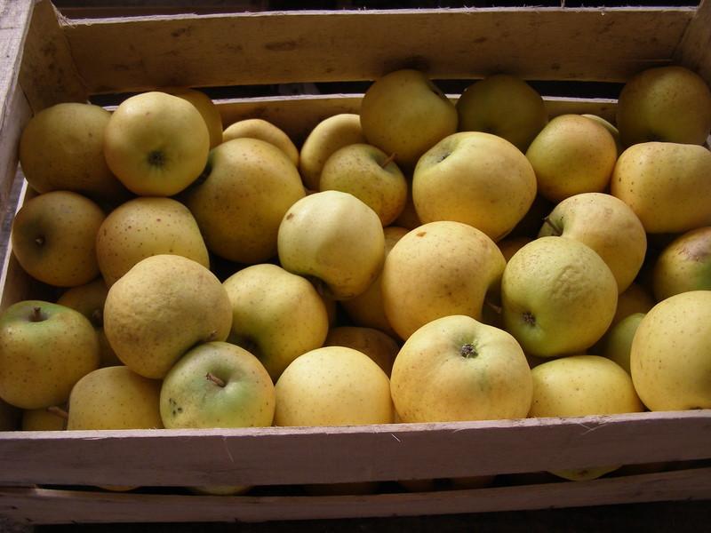 Caisse de pomme Belchard