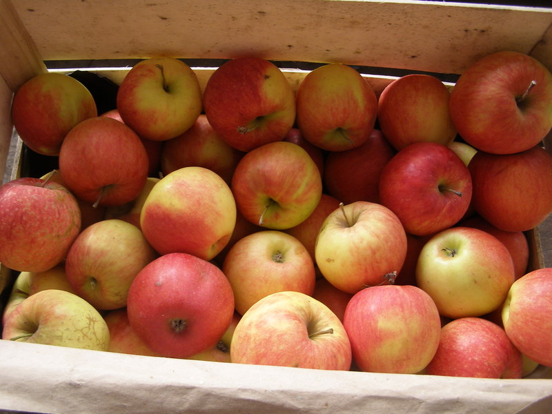 Caisse de pommes Jonagold